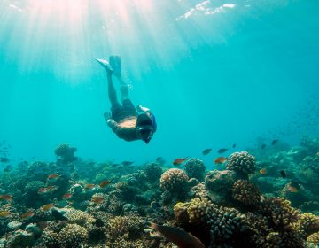 Top Maldives Resorts for Snorkeling and Diving