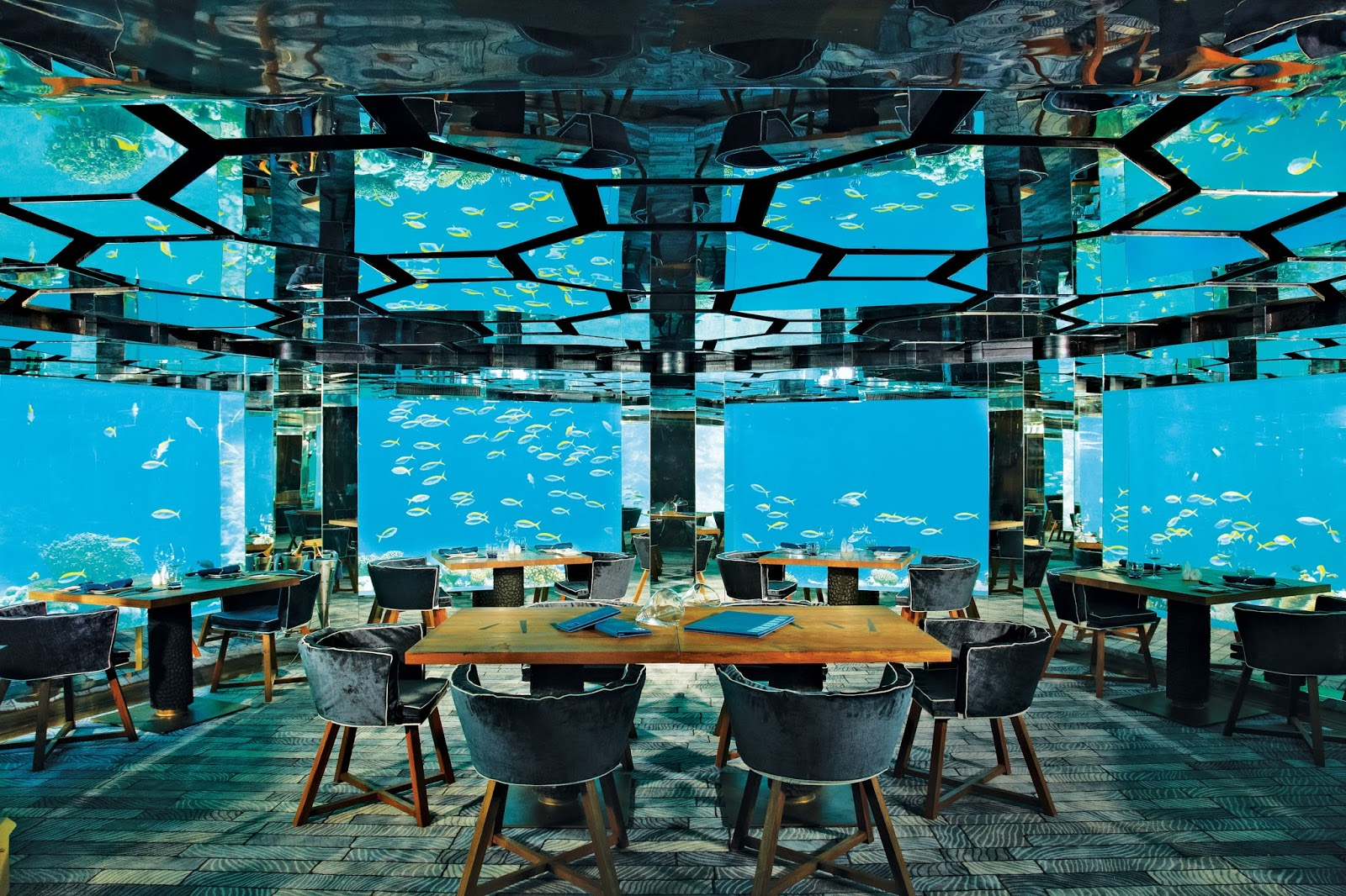 Top Restaurants In The Maldives The Maldives Expert