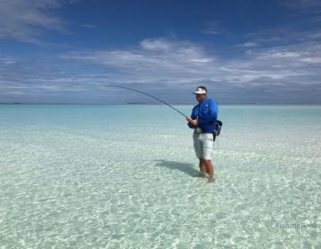 Fishing in the Maldives