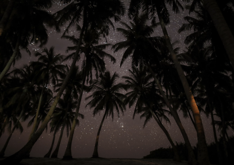 Eight Things to Do in the Maldives at Night
