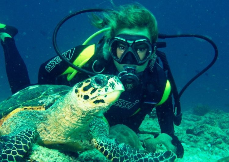 Diving in the Maldives – All You Need to Know