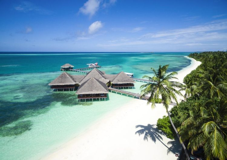 Things to Do in the Maldives in the Daytime