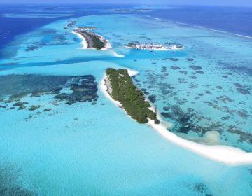Diving South Malé Atoll – The Vaadhoo Region