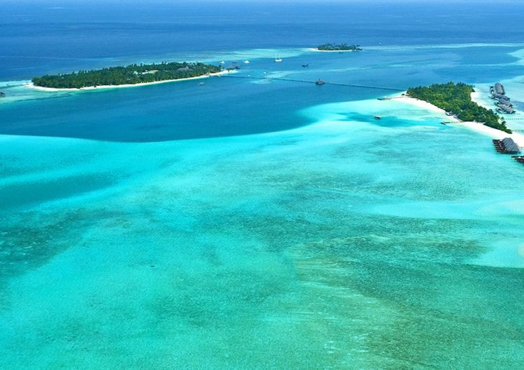 Diving in the South Ari Atoll – The Rangali Region