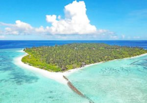 Diving in the North Ari Atoll -The Feridhoo Region