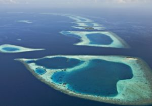 Diving in the North Nilandhe Atoll – The Feeali Region