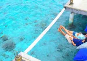 How to Plan the Perfect Maldives Maldives Honeymoon