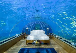 Aqua Marine Dreams – Sleeping with the Fishes